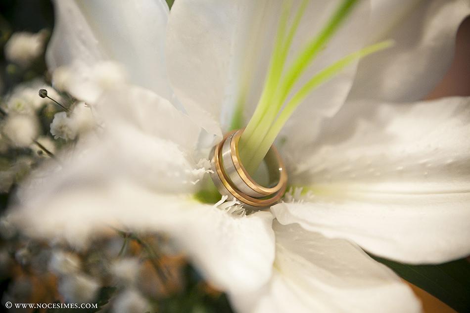 anells fotograf bodes girona costa brava